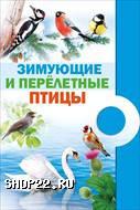 """Комплект  """"Зимующие и перелетные птицы """""""